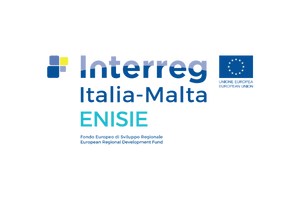 Enisie logo