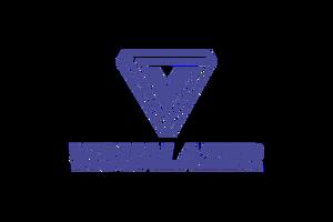 Visualazer logo